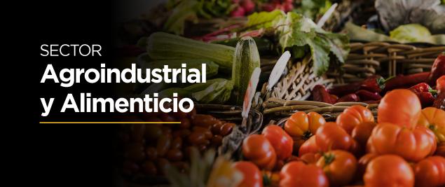 01_Agroindustrial-y-Alimenticio